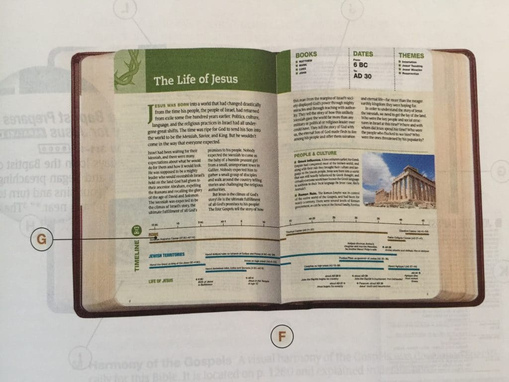 NLT Chronological Life Application Study Bible (Hardcover ...