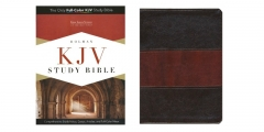 Holman KJV Study Bible Saddle Brown LeatherTouch Indexed Review
