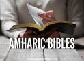 Where to Find an Amharic Bible